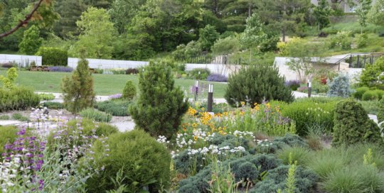 The Rutledge Conifer Garden, May 2017. Photo by Kelly Norris.