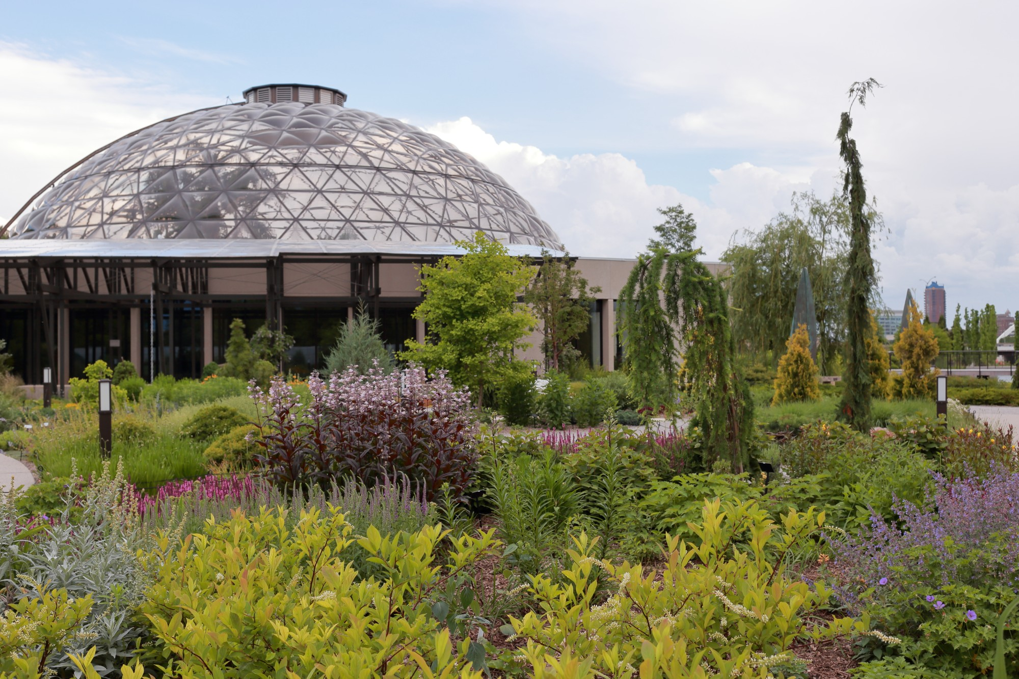 A view from the Koehn Garden towards the conservatory on June 1. Photo by Kelly Norris.