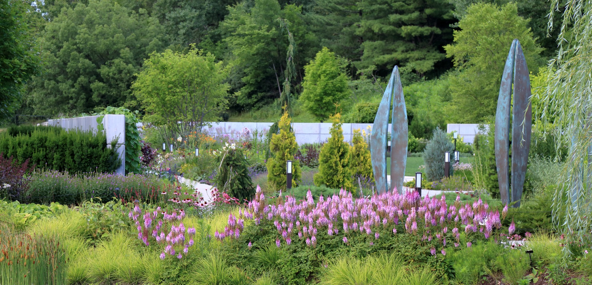 Looking northeast towards Persona I, II and III and the Koehn Garden in the background, July 7. Photo by Kelly Norris.
