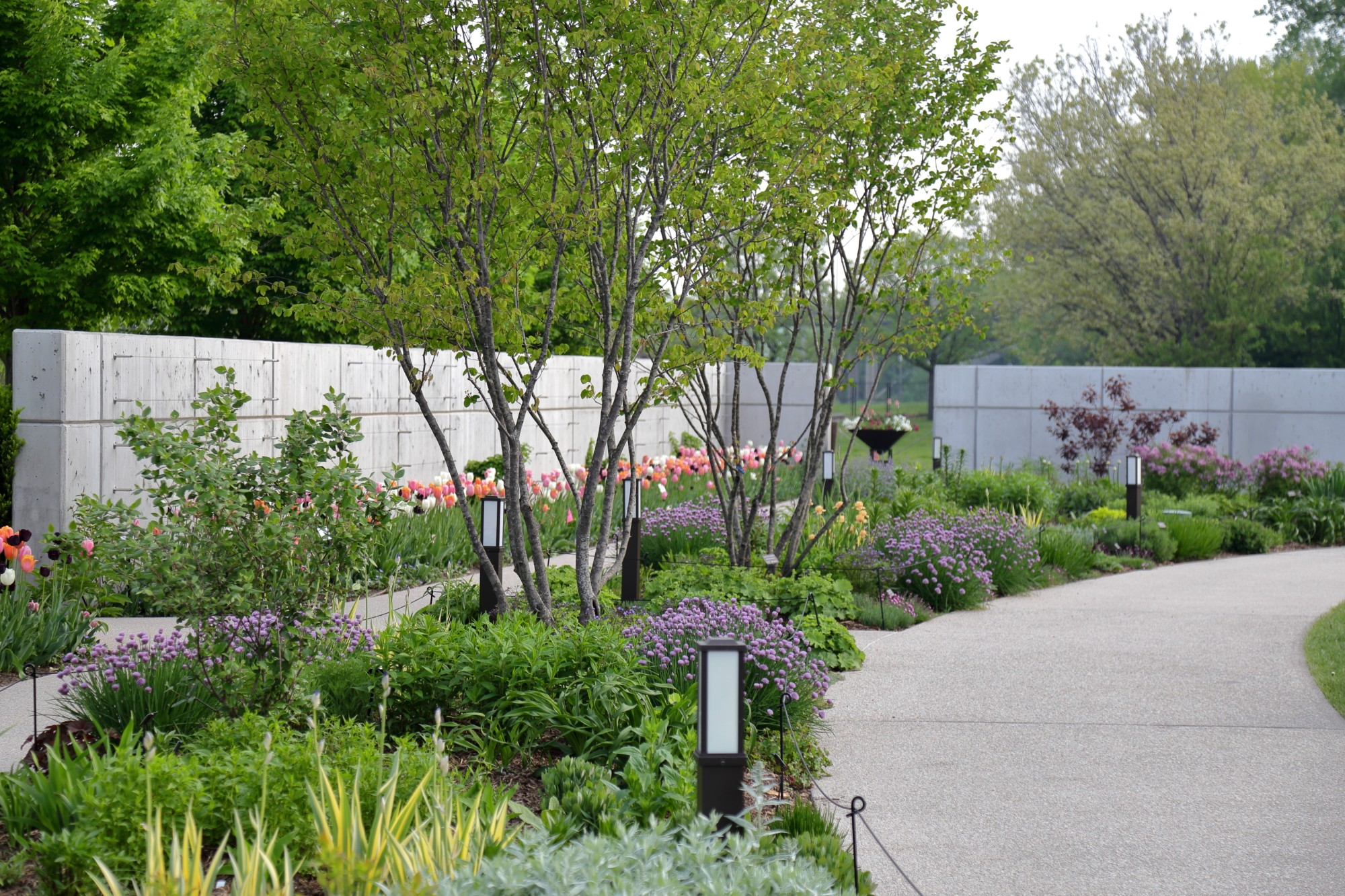 The Koehn Garden, May 7. Photo by Kelly Norris.