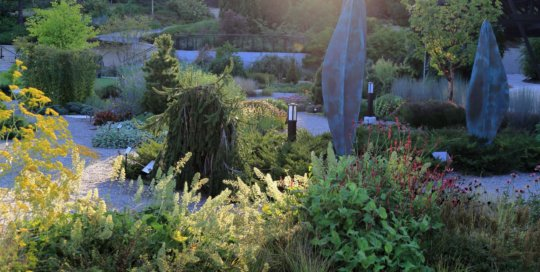 The Rutledge Conifer Garden, September 2016. Photo by Kelly Norris.