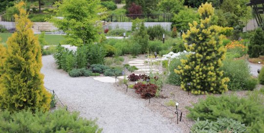 The Rutledge Conifer and Gravel Garden on June 1. Photo by Kelly Norris.