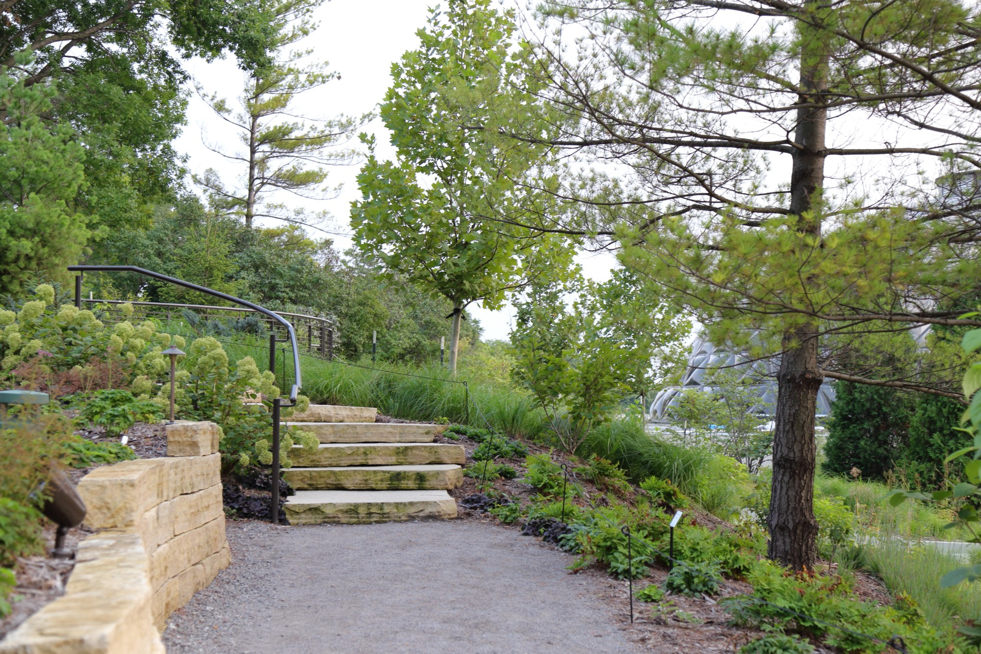 The path leading to the top of the hillside garden on August 30. Photo by Kelly Norris.