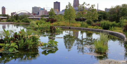 The water garden with the Des Moines skyline in the background, July 7. Photo by Kelly Norris.
