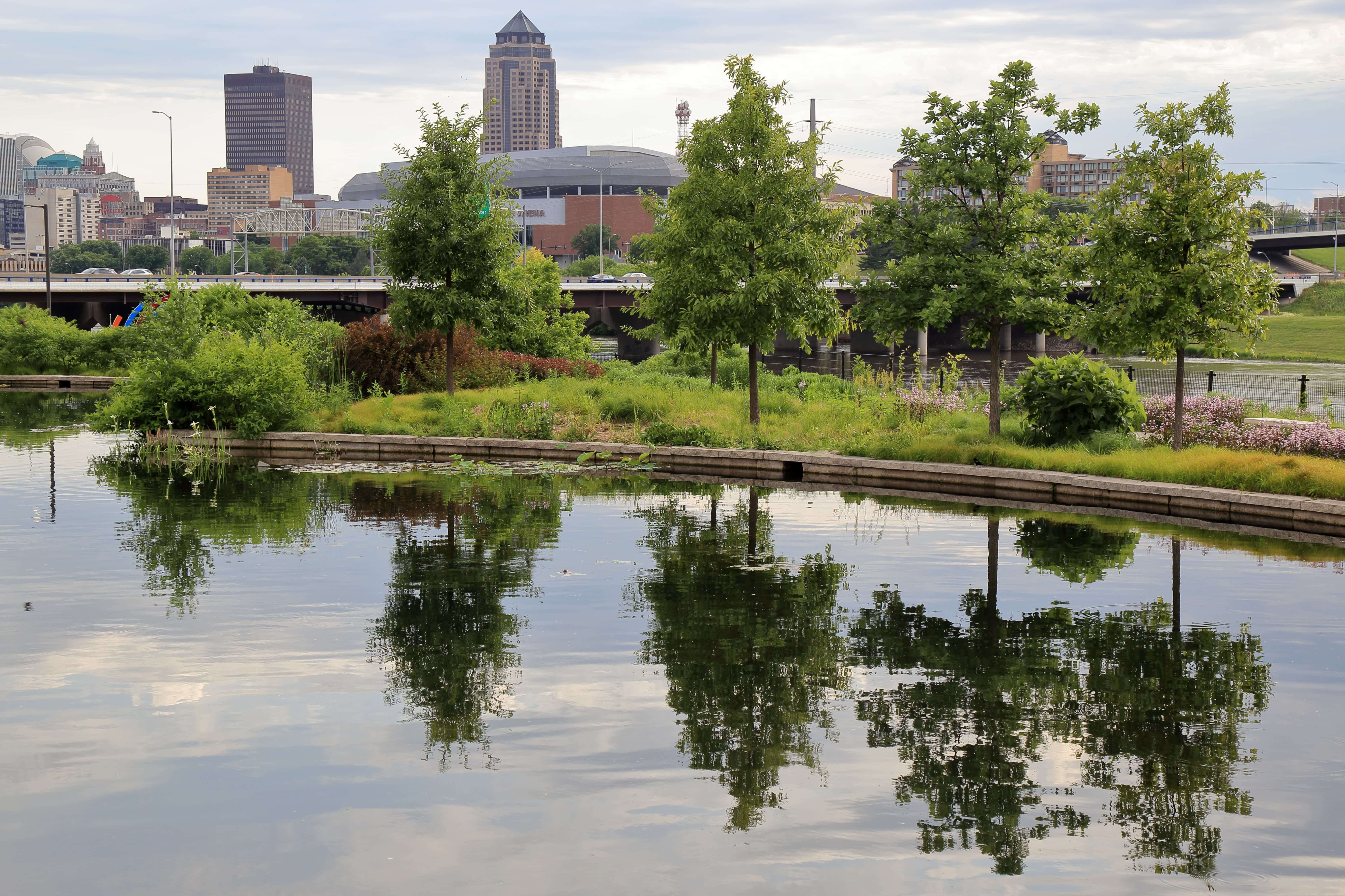 Looking across the water garden to the Lauridsen Savanna and downtown Des Moines skyline. Photo by Kelly Norris.