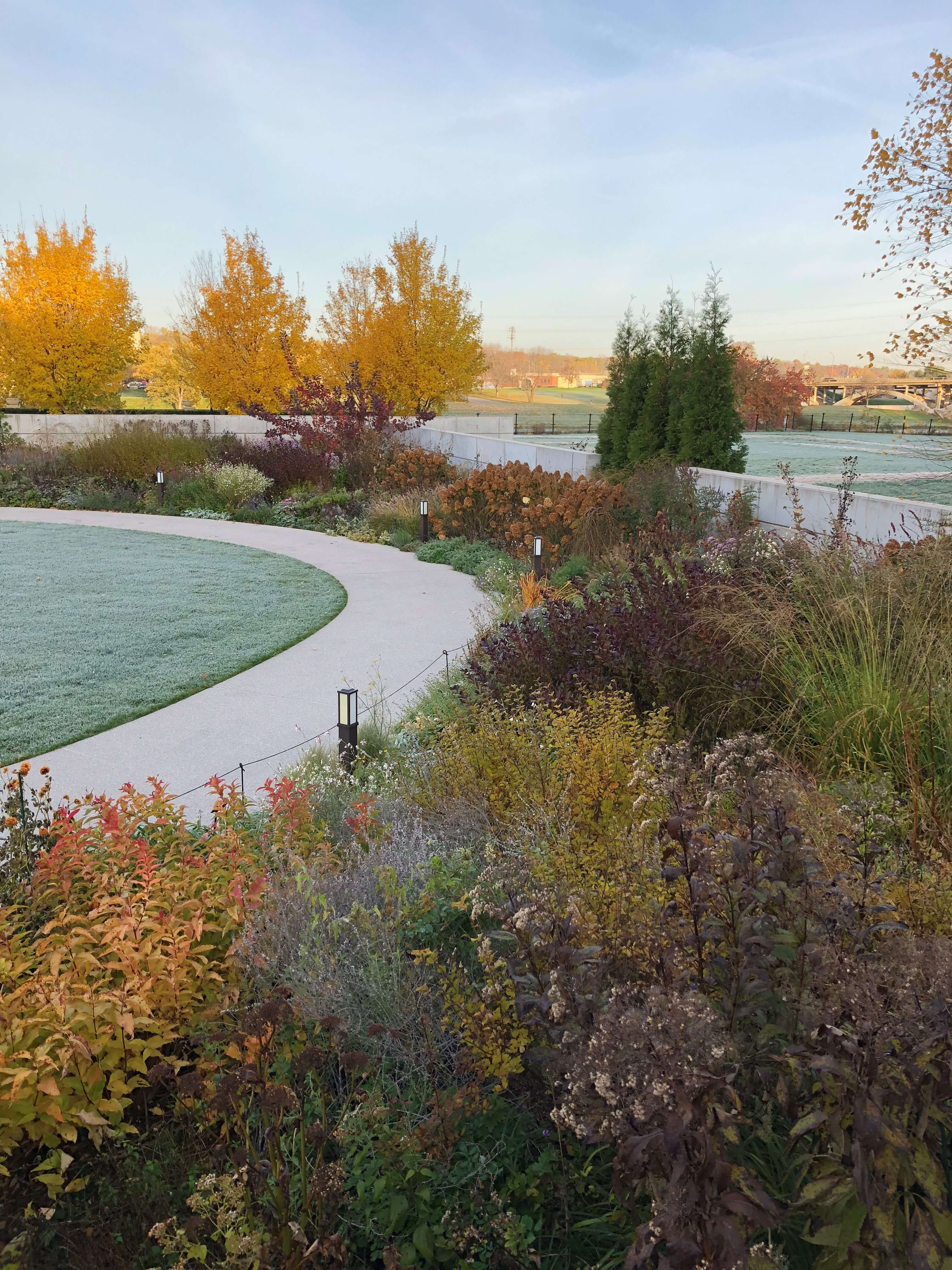 Frost in the Koehn Garden. Photo by Leslie Hunter, Oct. 24, 2018.