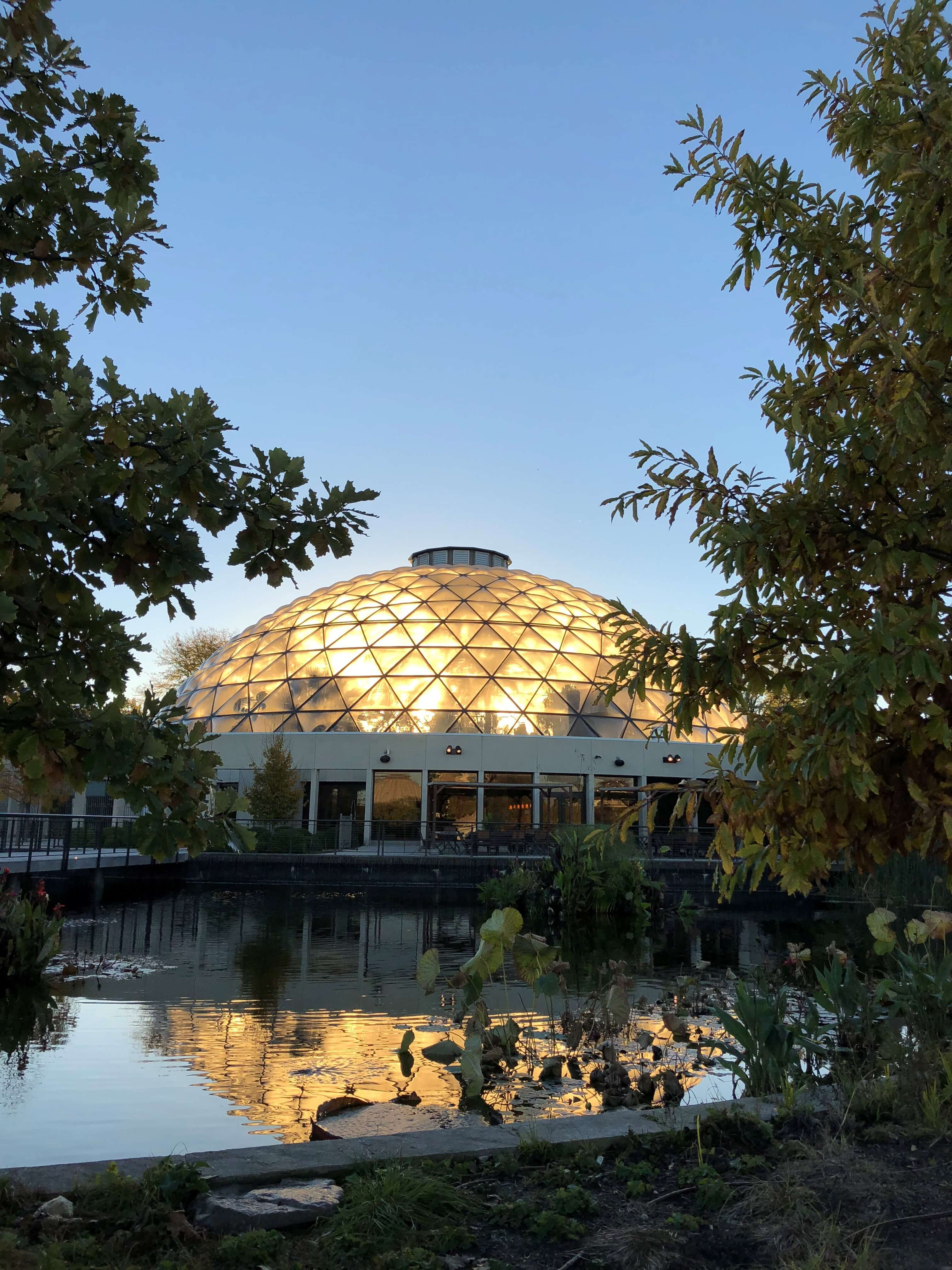 Sunrise behind the conservatory dome makes a beautiful early morning entrance. Photo by Leslie Hunter, Oct. 17, 2018.