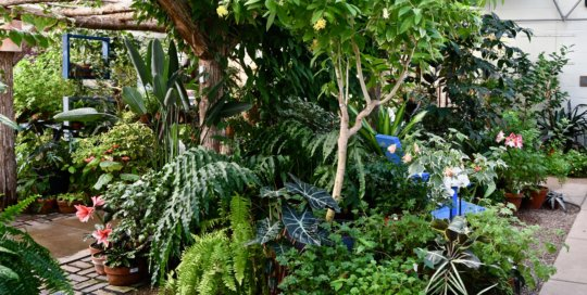 Gardening inspiration extends high and low in the Gardeners Show House.