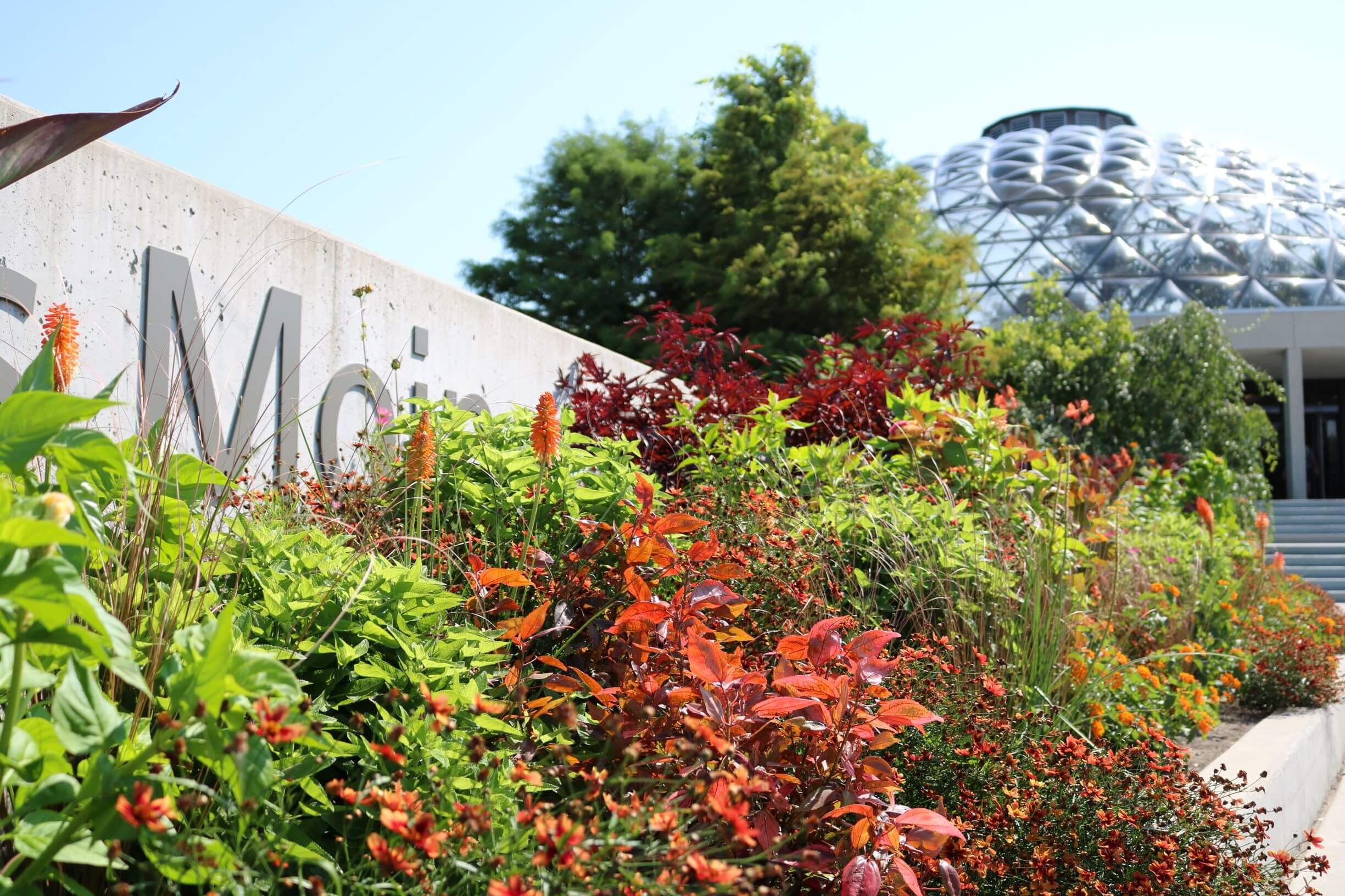 A look at this season's hot colored planting design in the EMC Insurance Companies Entry Garden.