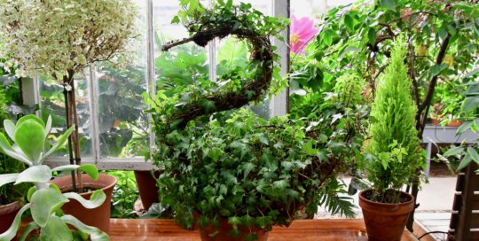 Animal-inspired topiary designs in the Gardeners Show House.