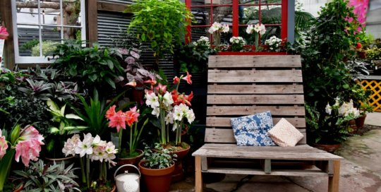 A relaxing seat among the greenery and Amaryllis blooms in the Gardeners Show House.
