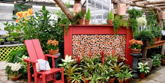 """The """"fireplace"""" in the Gardeners Show House for the holiday season. The Bromeliads make up the """"flames."""""""