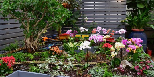 "The ""tropical"" side of the holiday train display features vibrantly colored orchid blooms and varied greenery."