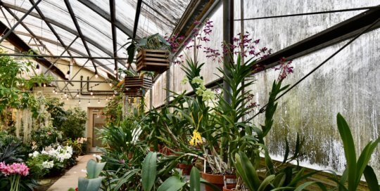The Gardeners Show House is a houseplant haven for guests to spark their own container creativity.