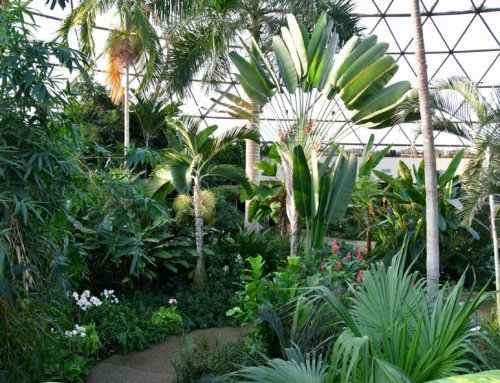 Botanical Garden Profile: Garden Hosts