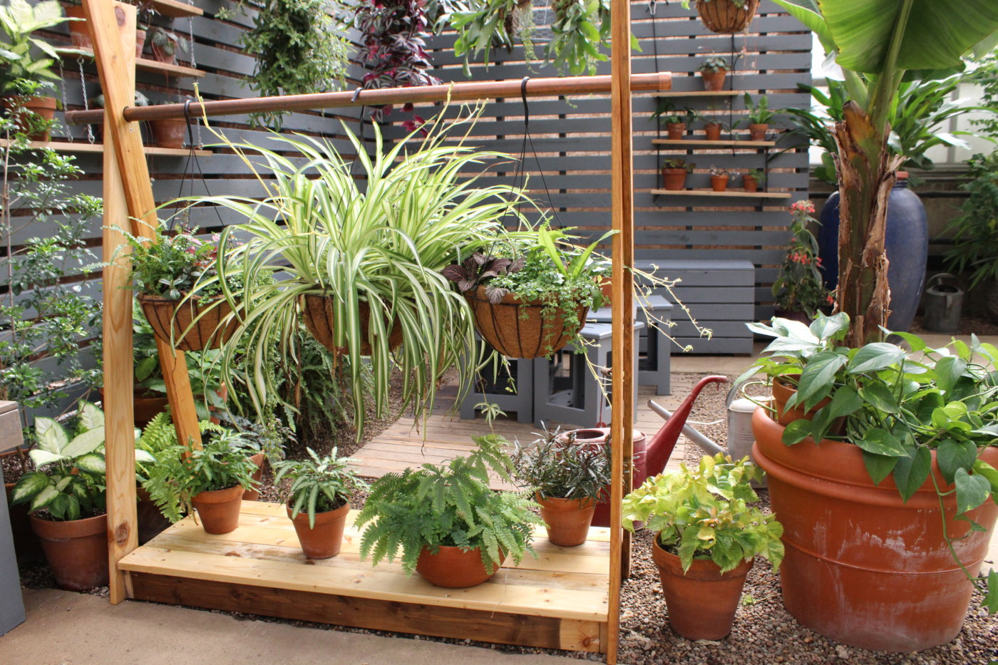 Plants in pots hanging and sitting on a wooden structure.
