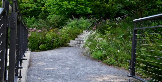 A lush, inviting entrance to explore the hillside garden from its winding path.
