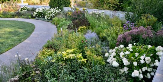 The towering, billowing perennial border in the Koehn Garden shines in late August.