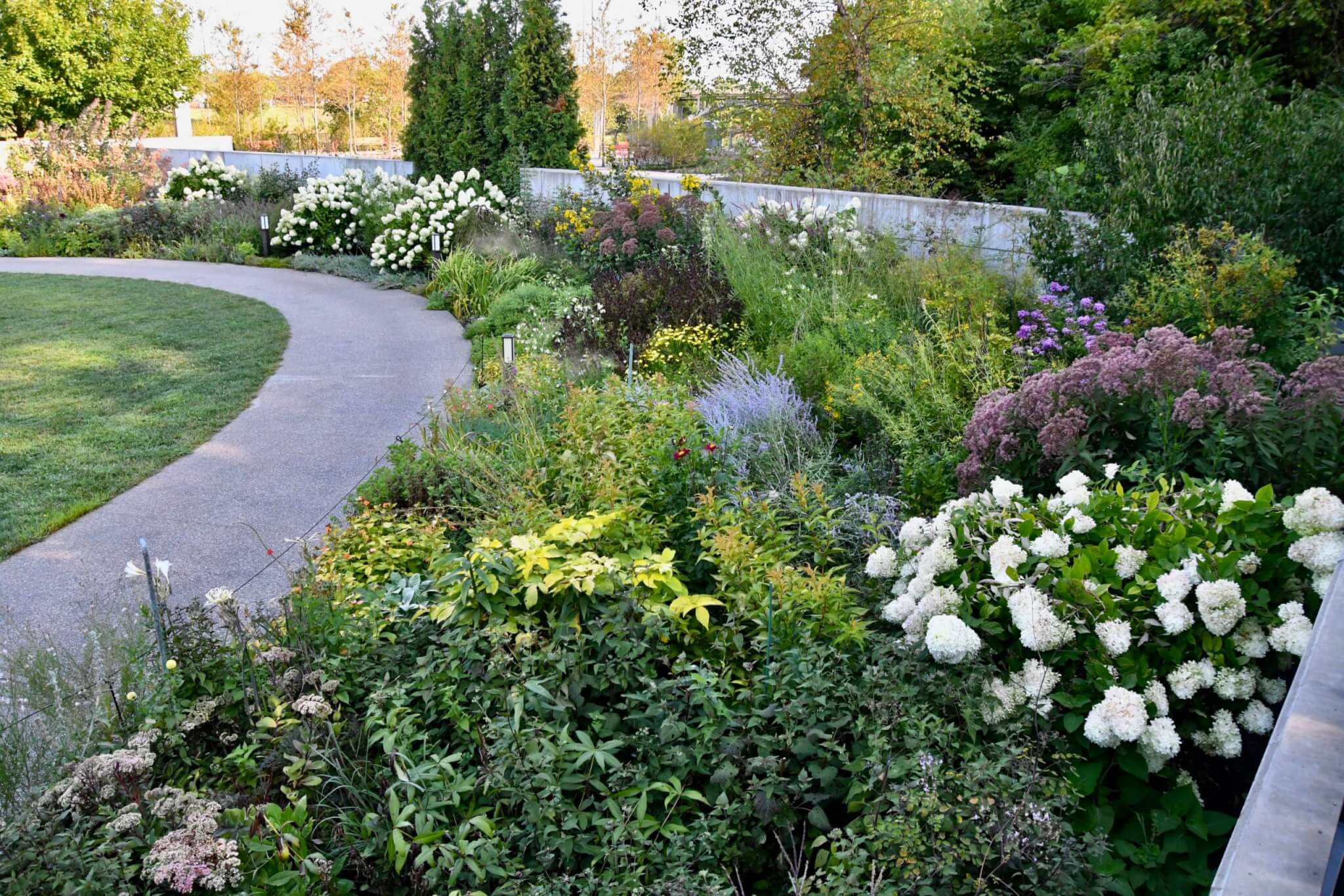 Path surrounded by different colored flowers and plants