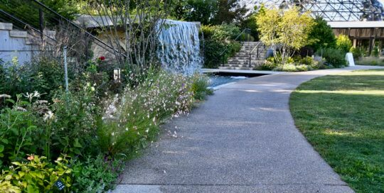 Looking toward the conservatory and waterfall, the Koehn Garden path offers an ideal place to pause and reflect.