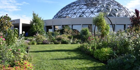 The Wells Fargo Rose Garden remained the lush, green welcome for Botanical Garden visitors in September.