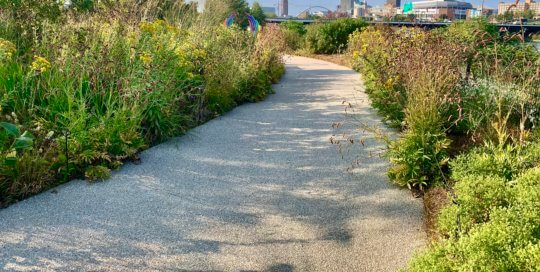 The Lauridsen Savanna offers a secluded path through native late-summer plantings with a view of downtown Des Moines.