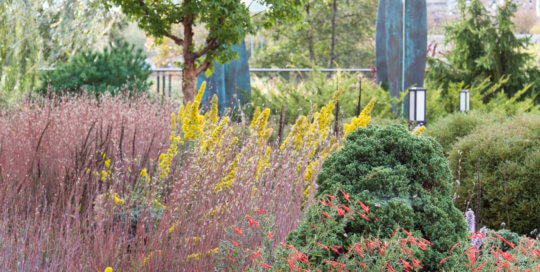 Another look at the planting layers -- and artwork -- in the Rutledge Conifer Garden. Photo by Kelly Norris.