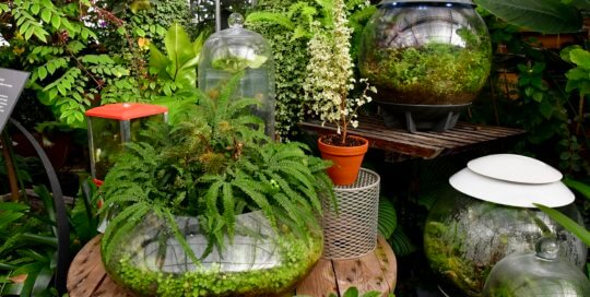 Unique containers abound in this creative display inside the Gardeners Show House.