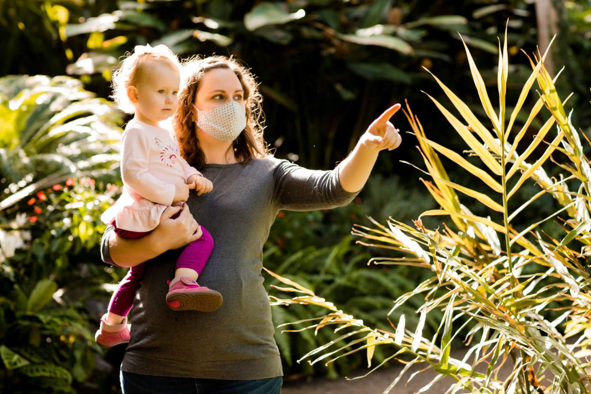 An adult holding a child and pointing to a plant