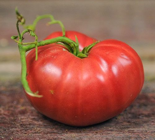 Tomato - Granny Cantrell German Red