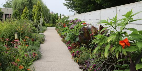 Sidewalk surrounded by colorful plants and flowers with trees and part of the Des Moines skyline in the background.